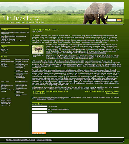 Example of a blog entry